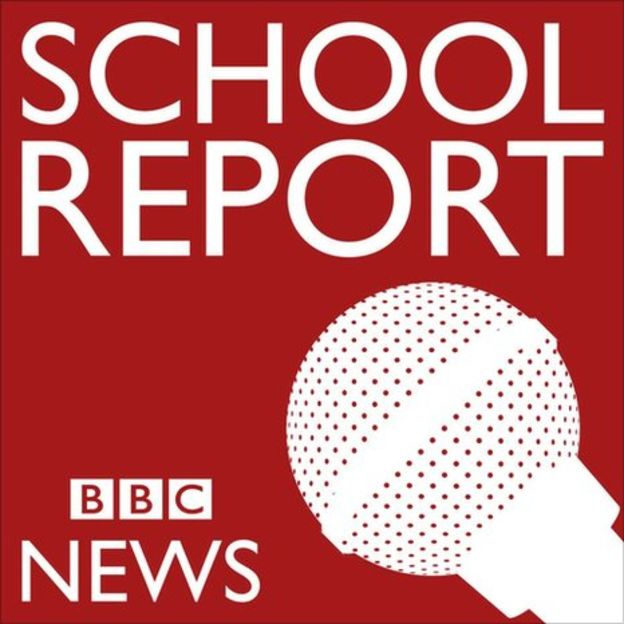 school_report__logo