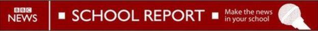 school_report_banner